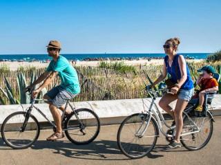 Loueurs et réparateurs de vélos