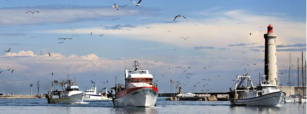 Chalutier,  port de pêche de Sète