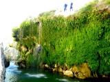 Office des Moniteurs du Languedoc rappel arrose dans le canyon d'initiation du diable de l'herault