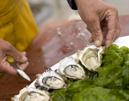 bar-a-huitres-l-annexe-sete-coquillages-huitre-fruits-de-mer-2828
