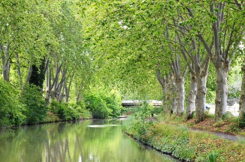 fluvial-(2)