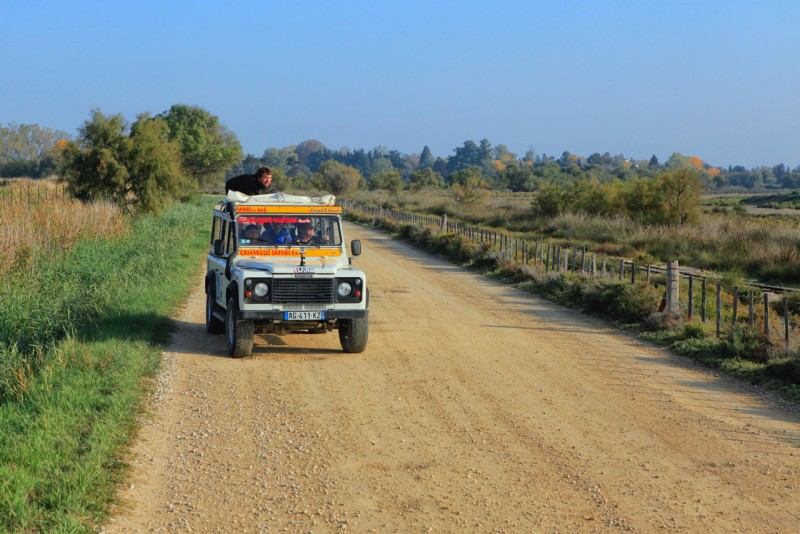 Le Gitan Safari Photo