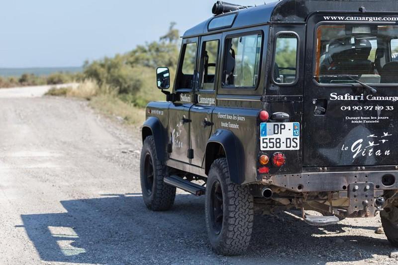 safari-gitan-tr-12055