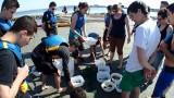 Kayakmed circuit Flamant Rose decouverte de la lagune Sete