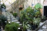miam-jardin-modeste-ph-p-schwartz-2651