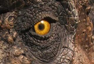 parc-dinosaures-5-2186340