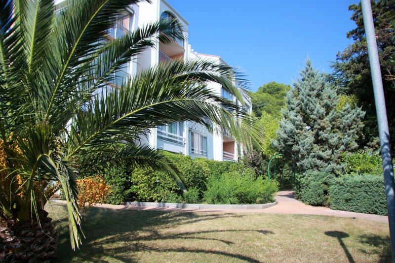 jardin chanterelles 1