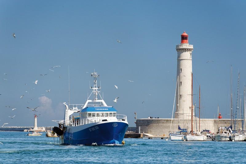 Port de pêche - Sète