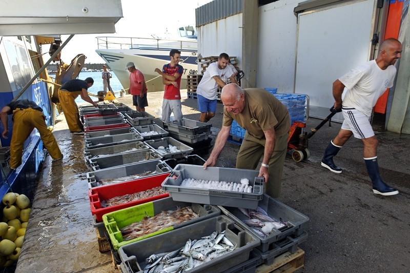 gastronomie-poisson-jp-degas-2014-1-copier-2510 port criee sete poissons