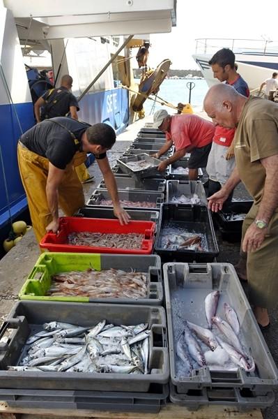 gastronomie-poisson-jp-degas-2014-1-port criee sete poissons