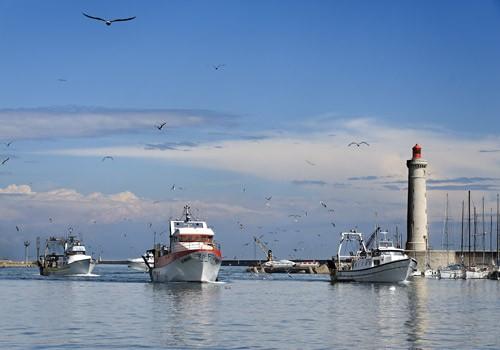 port-chalutier-jp-degas-201-240070